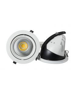50w COB Gimbal Down Light
