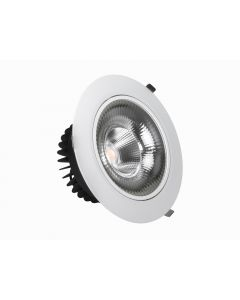80w COB Tilt Down Light
